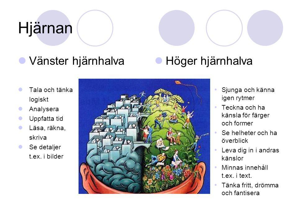 Hjärnan Vänster hjärnhalva Höger hjärnhalva Tala och tänka logiskt