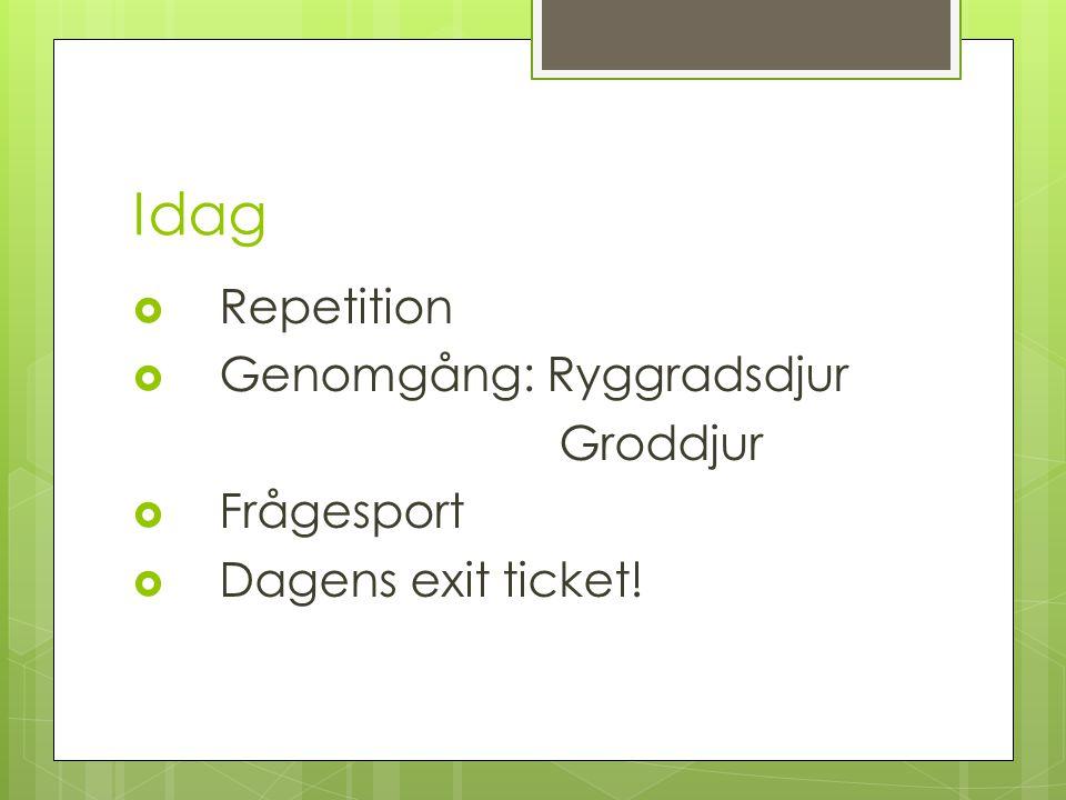 Idag Repetition Genomgång: Ryggradsdjur Groddjur Frågesport
