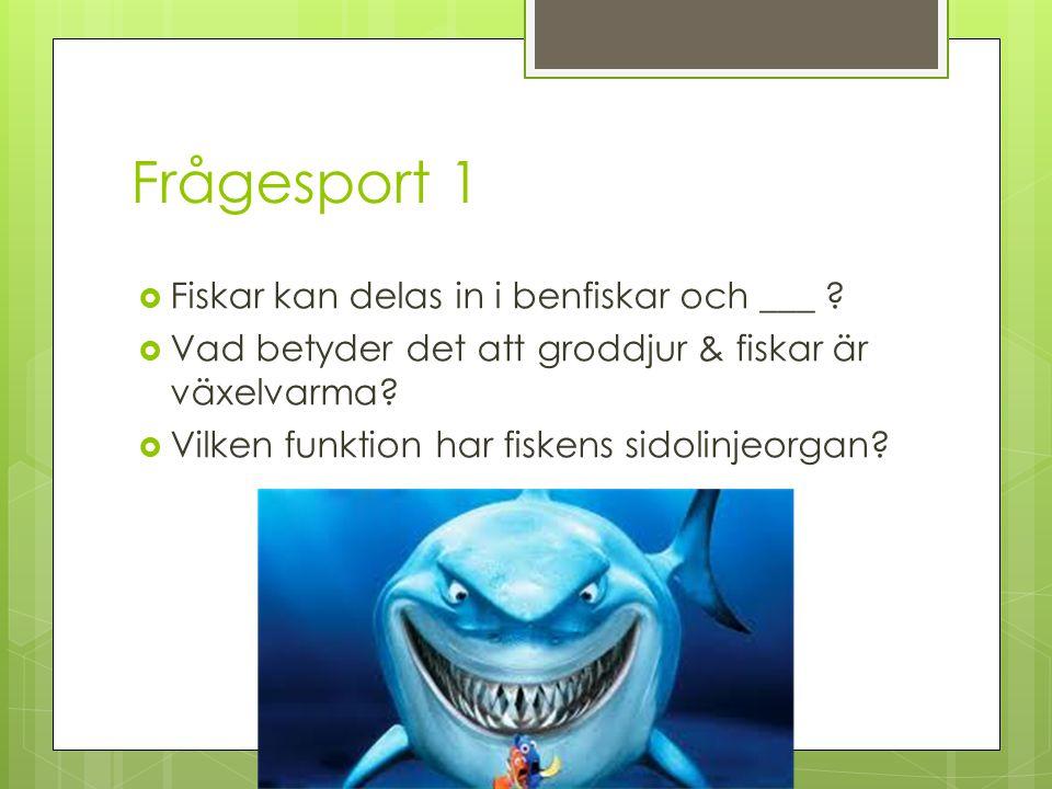 Frågesport 1 Fiskar kan delas in i benfiskar och ___