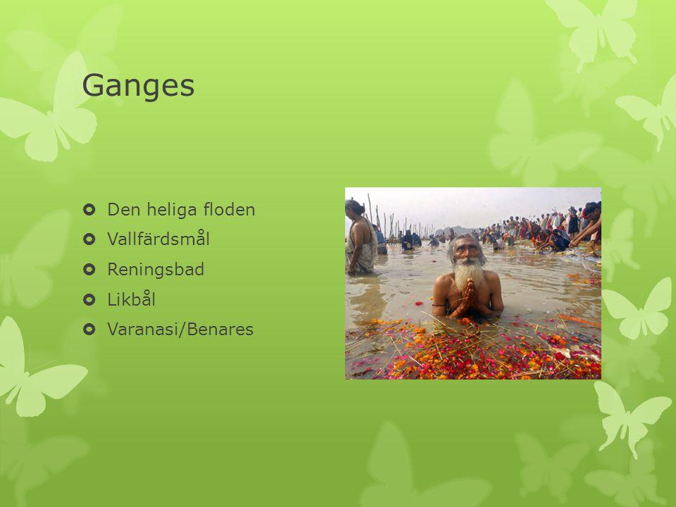 Ganges Den heliga floden Vallfärdsmål Reningsbad Likbål
