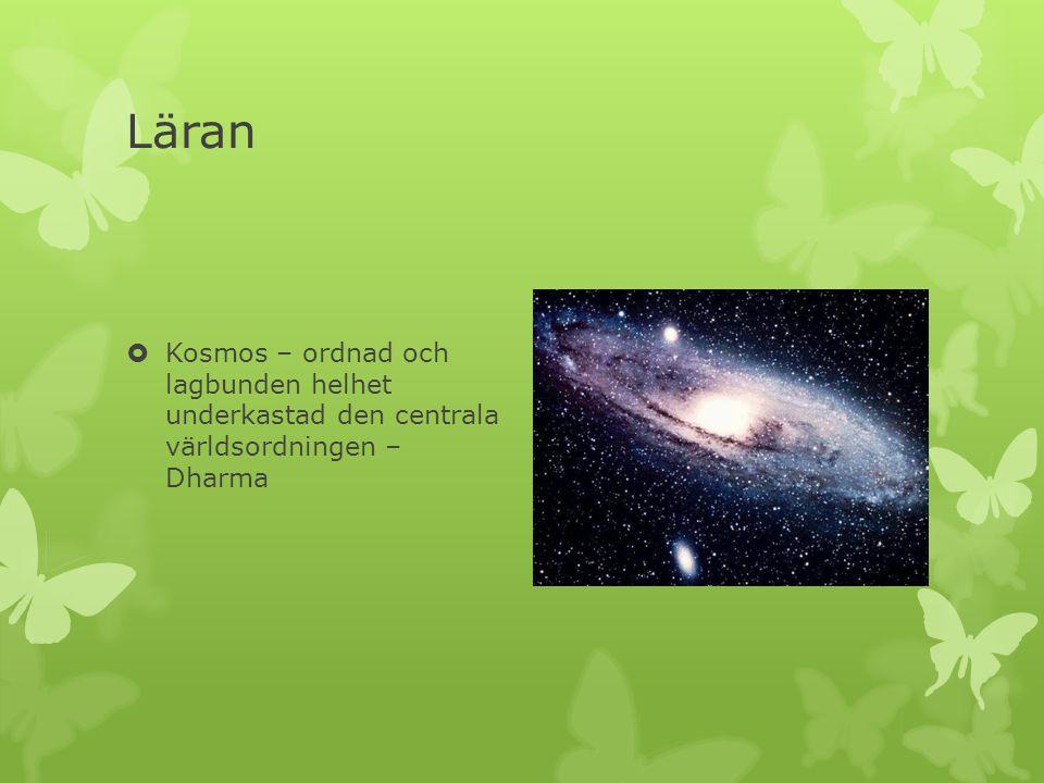 Läran Kosmos – ordnad och lagbunden helhet underkastad den centrala världsordningen – Dharma