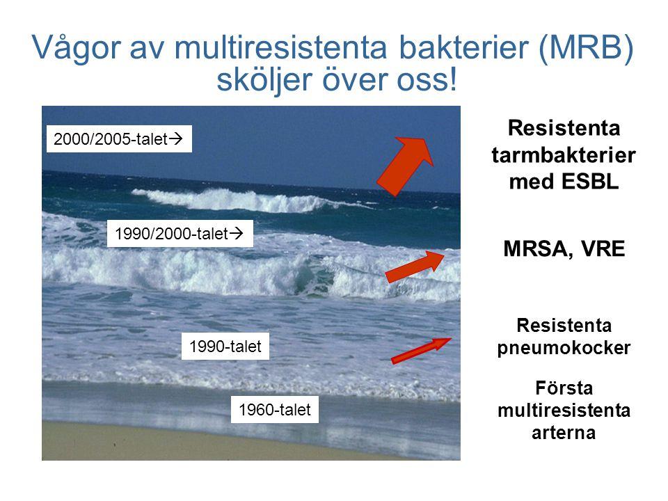 Vågor av multiresistenta bakterier (MRB) sköljer över oss!