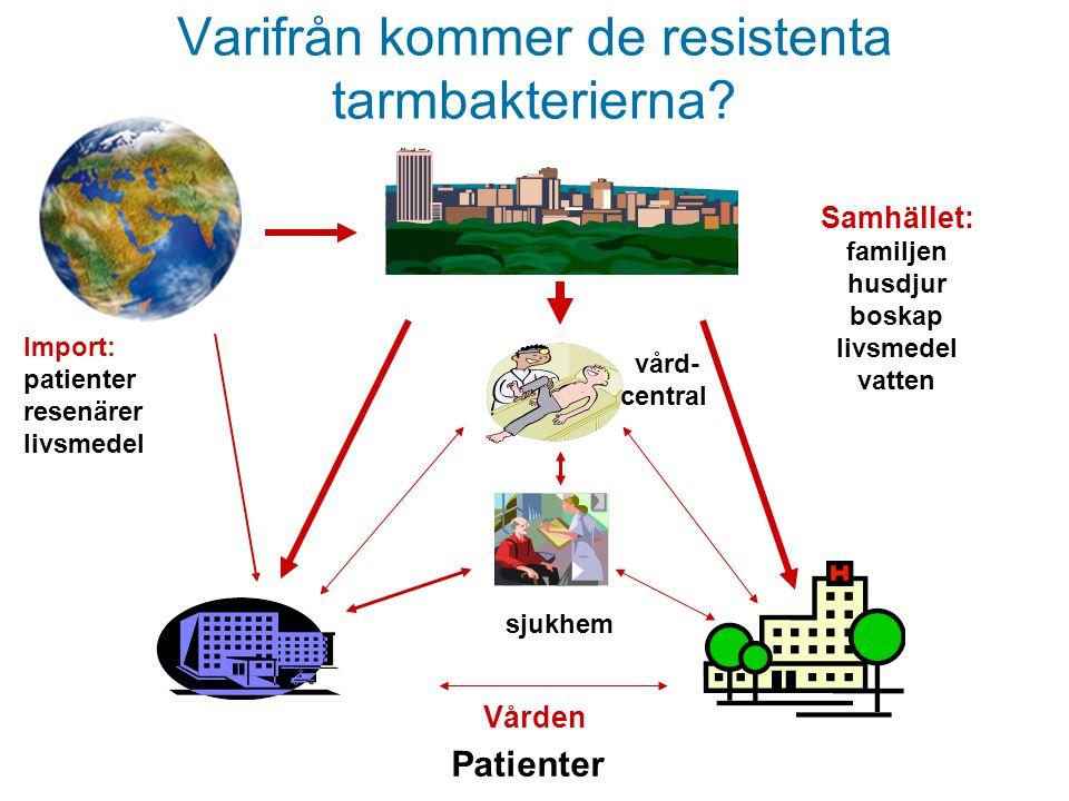 Varifrån kommer de resistenta tarmbakterierna