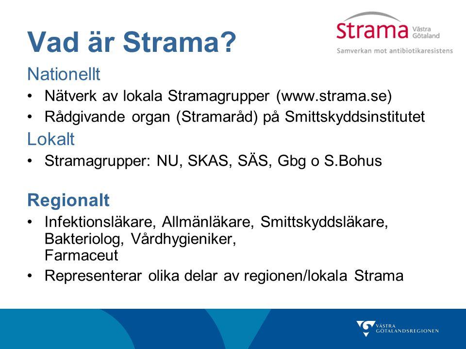 Vad är Strama Nationellt Lokalt Regionalt