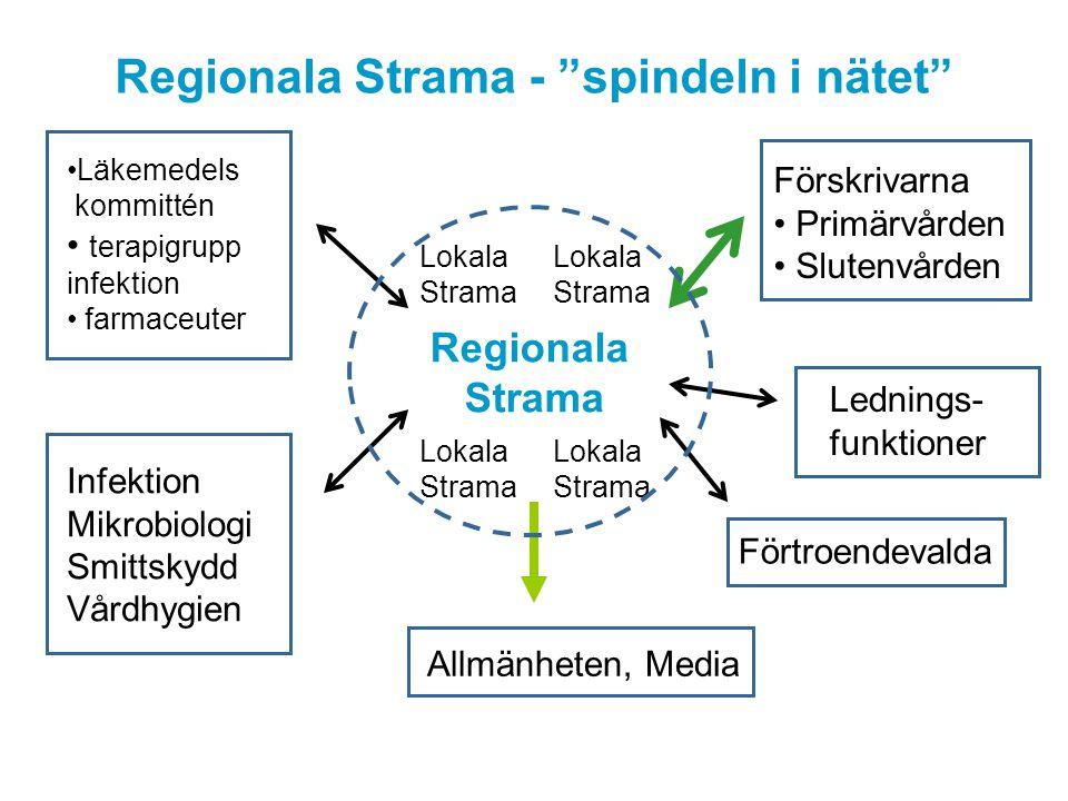 Regionala Strama - spindeln i nätet