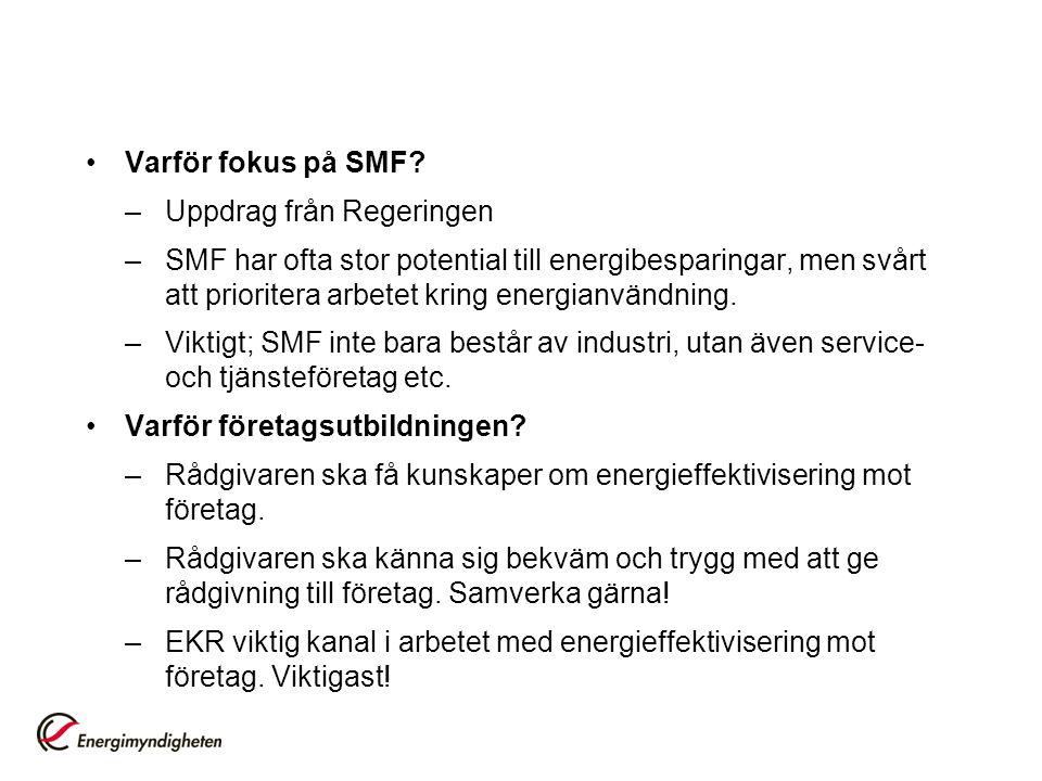 Varför fokus på SMF Uppdrag från Regeringen.