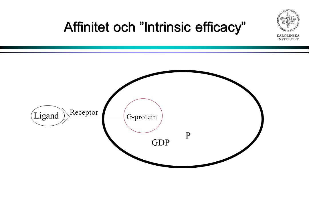 Affinitet och Intrinsic efficacy