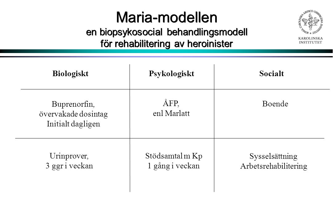 Maria-modellen en biopsykosocial behandlingsmodell för rehabilitering av heroinister
