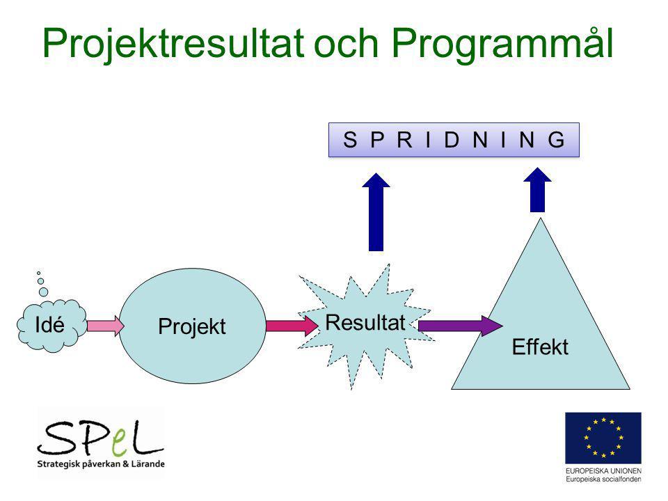 Projektresultat och Programmål