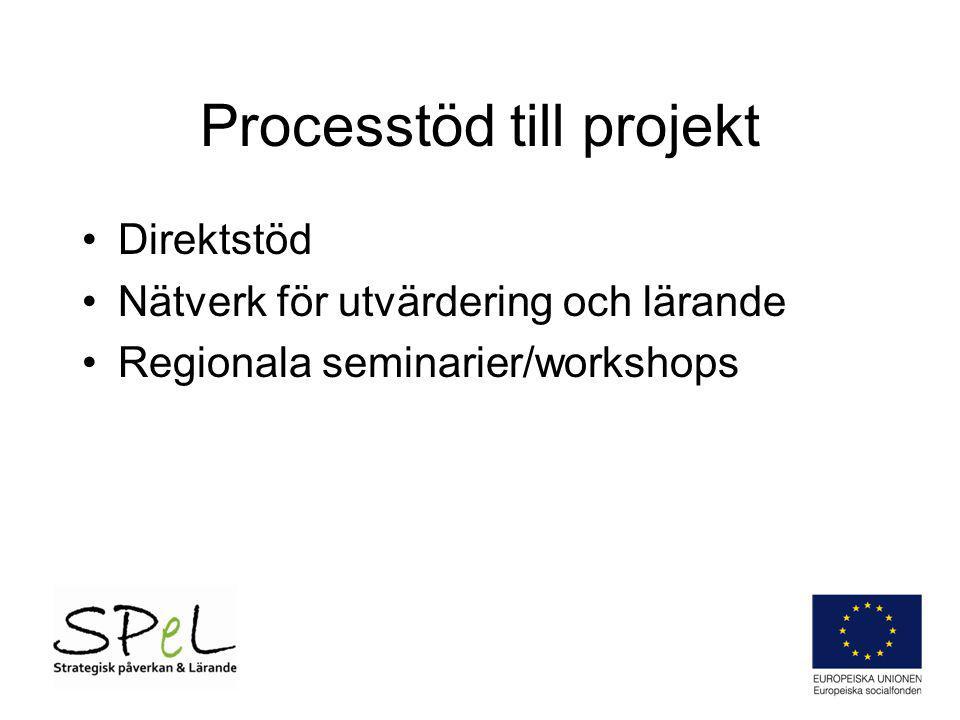 Processtöd till projekt