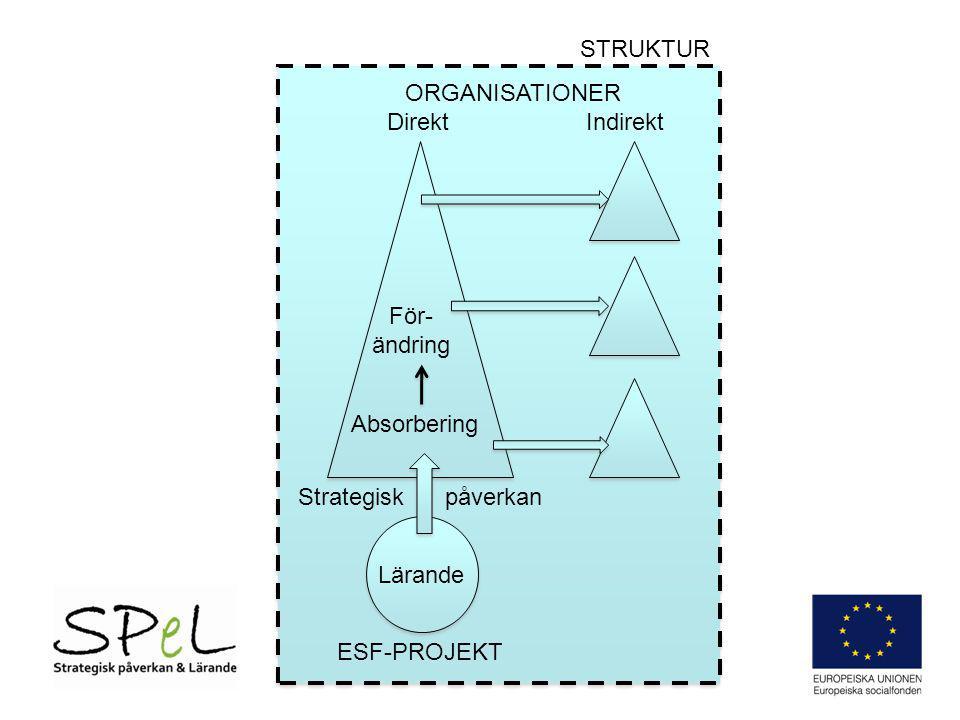 STRUKTUR ORGANISATIONER. Direkt Indirekt. För-ändring. Absorbering. Strategisk påverkan.