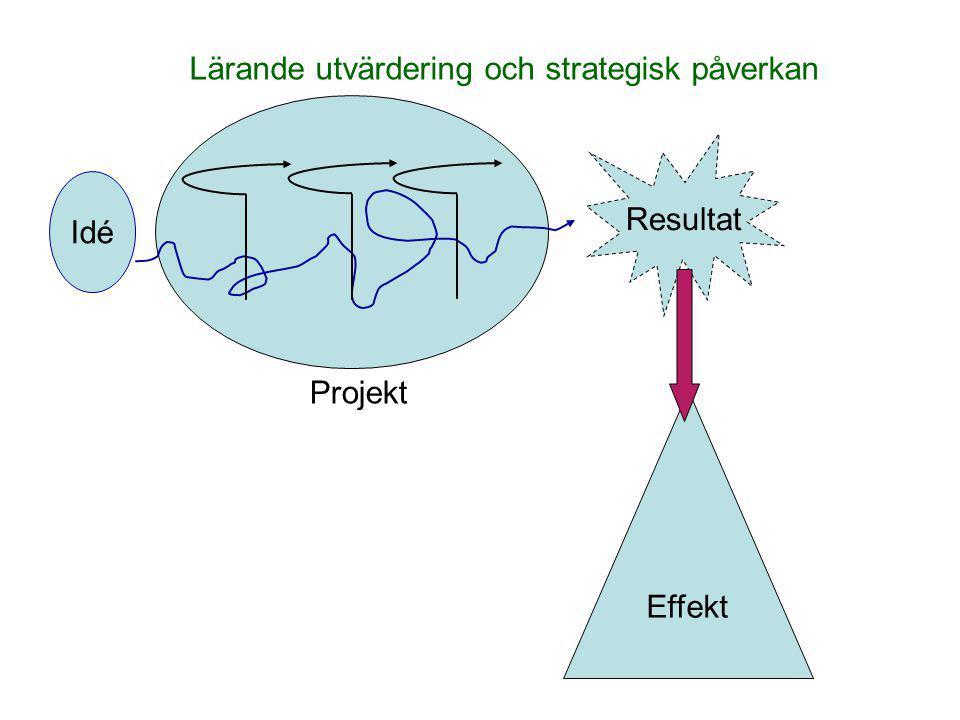 Lärande utvärdering och strategisk påverkan