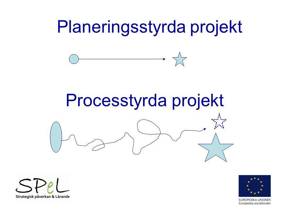 Planeringsstyrda projekt