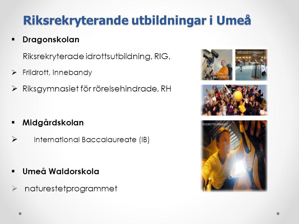 Riksrekryterande utbildningar i Umeå
