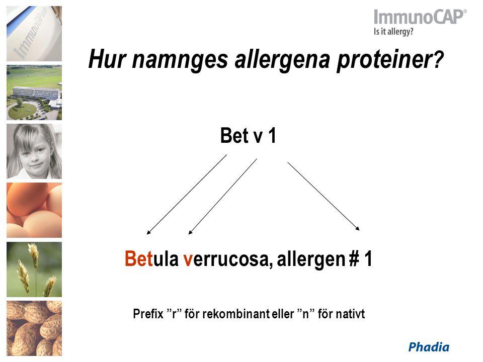 Hur namnges allergena proteiner