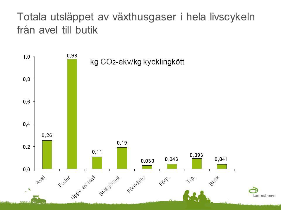 Totala utsläppet av växthusgaser i hela livscykeln från avel till butik