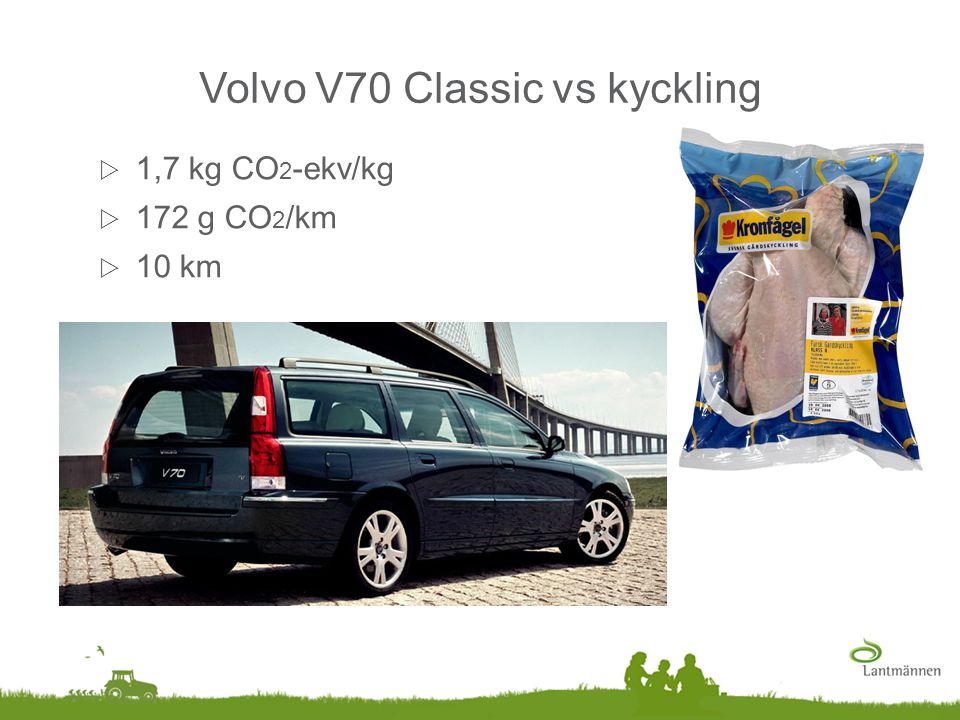 Volvo V70 Classic vs kyckling