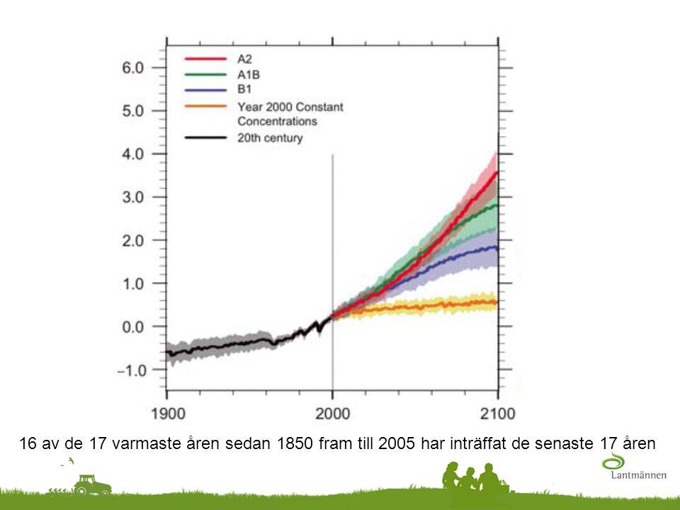 16 av de 17 varmaste åren sedan 1850 fram till 2005 har inträffat de senaste 17 åren