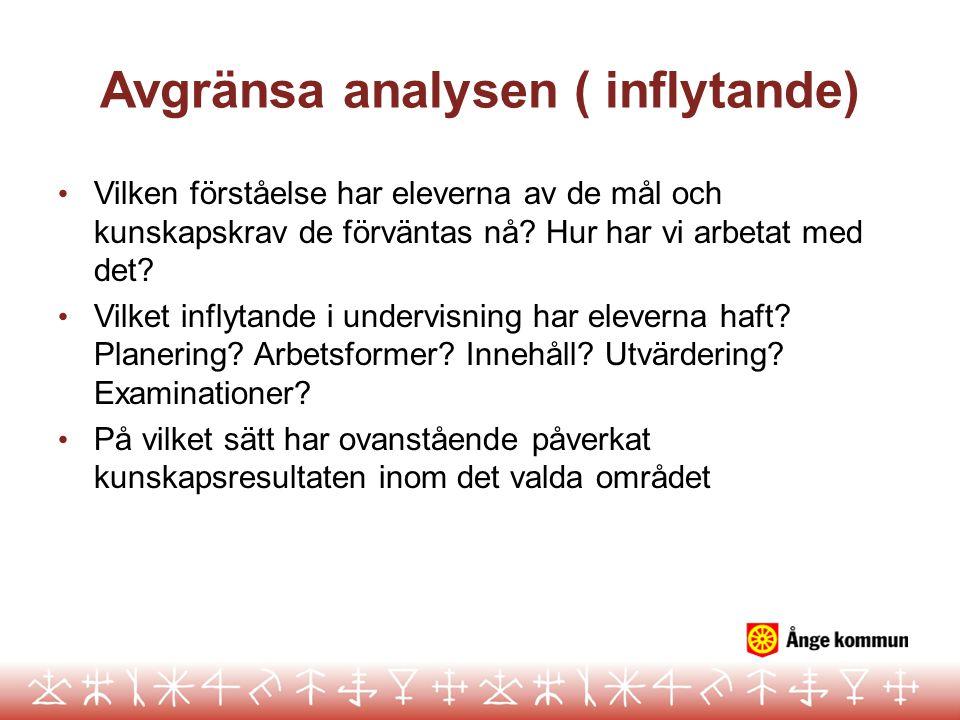 Avgränsa analysen ( inflytande)