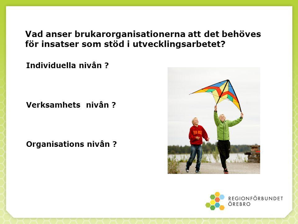Vad anser brukarorganisationerna att det behöves för insatser som stöd i utvecklingsarbetet
