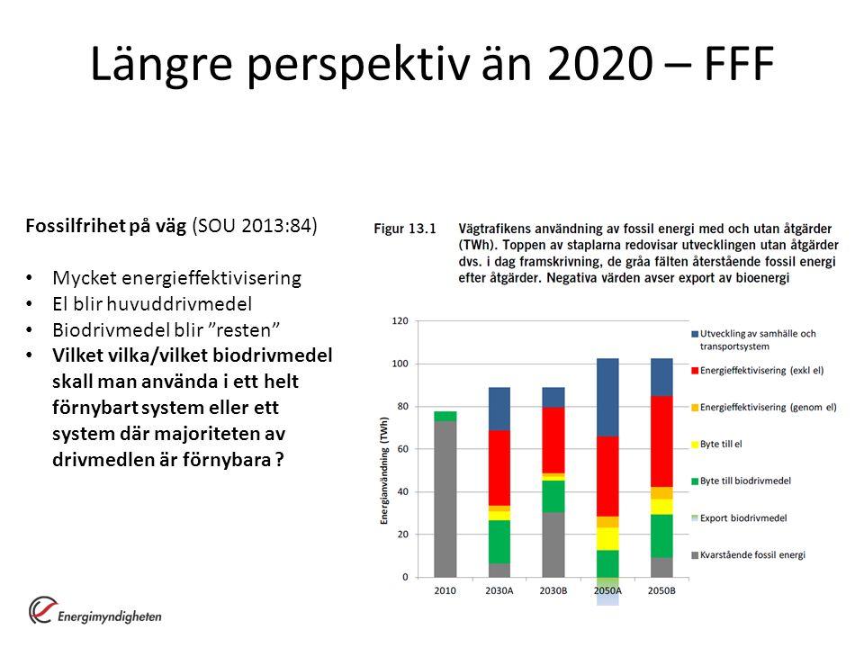 Längre perspektiv än 2020 – FFF
