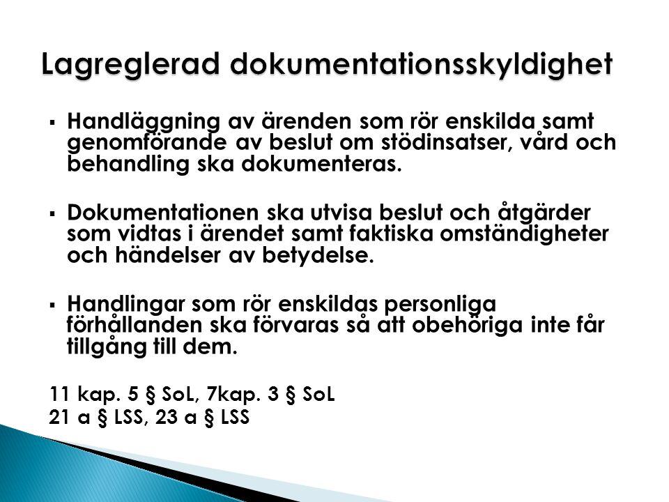 Lagreglerad dokumentationsskyldighet