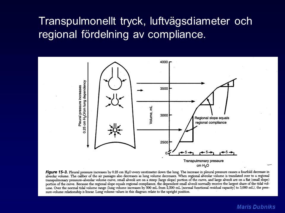 Transpulmonellt tryck, luftvägsdiameter och regional fördelning av compliance.