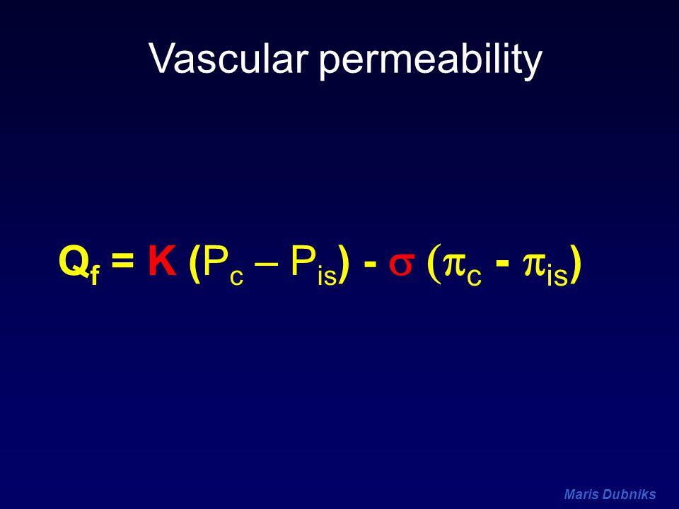 Vascular permeability