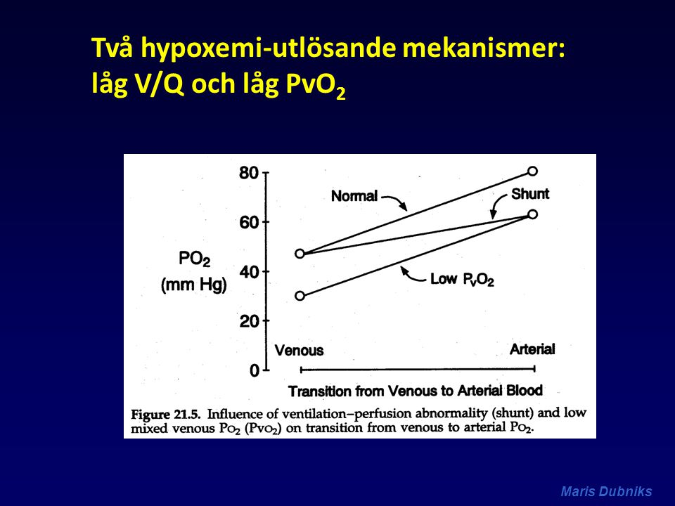 Två hypoxemi-utlösande mekanismer: låg V/Q och låg PvO2