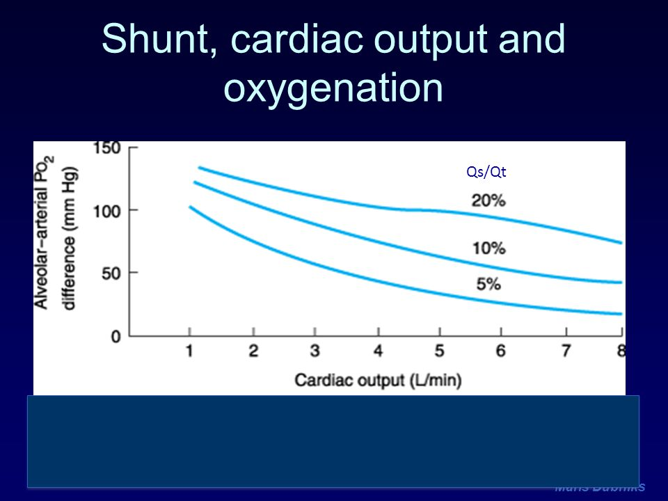 Shunt, cardiac output and oxygenation
