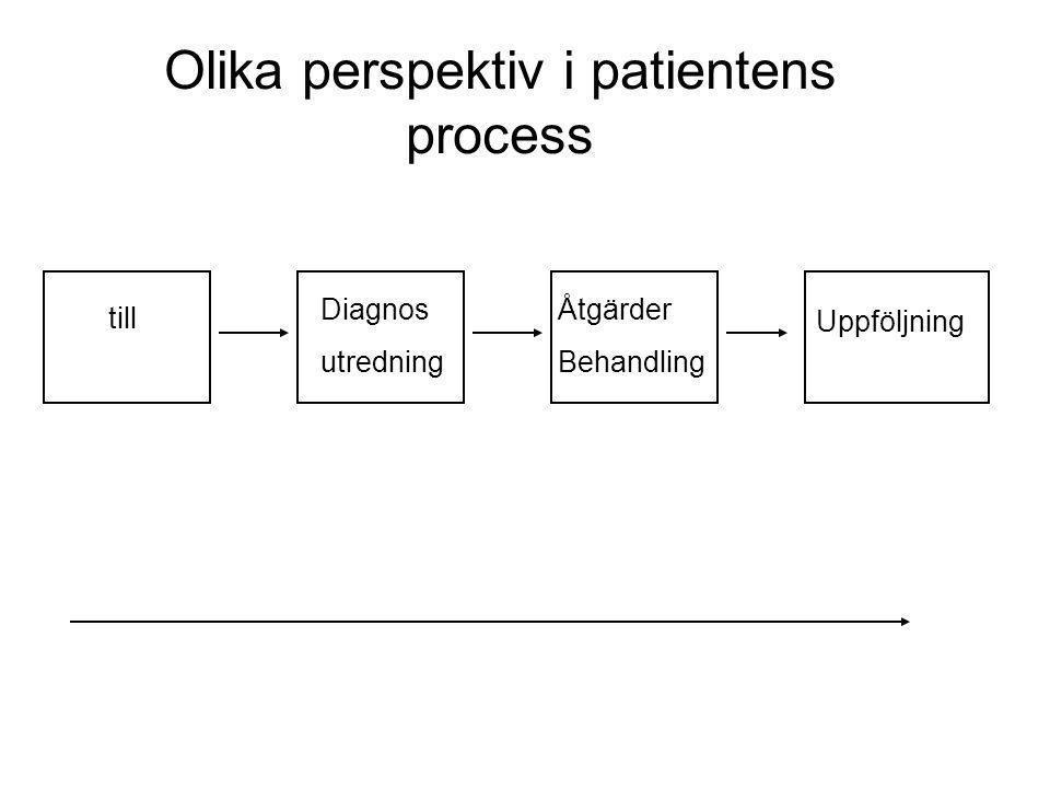 Olika perspektiv i patientens process