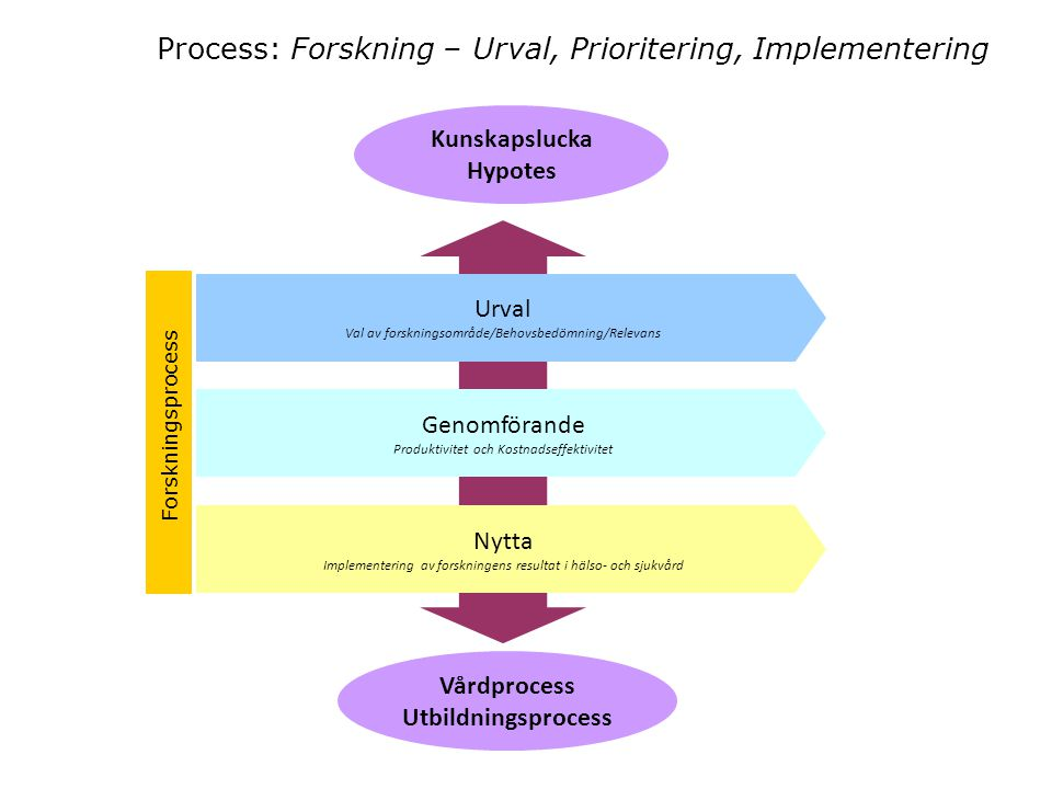 Process: Forskning – Urval, Prioritering, Implementering