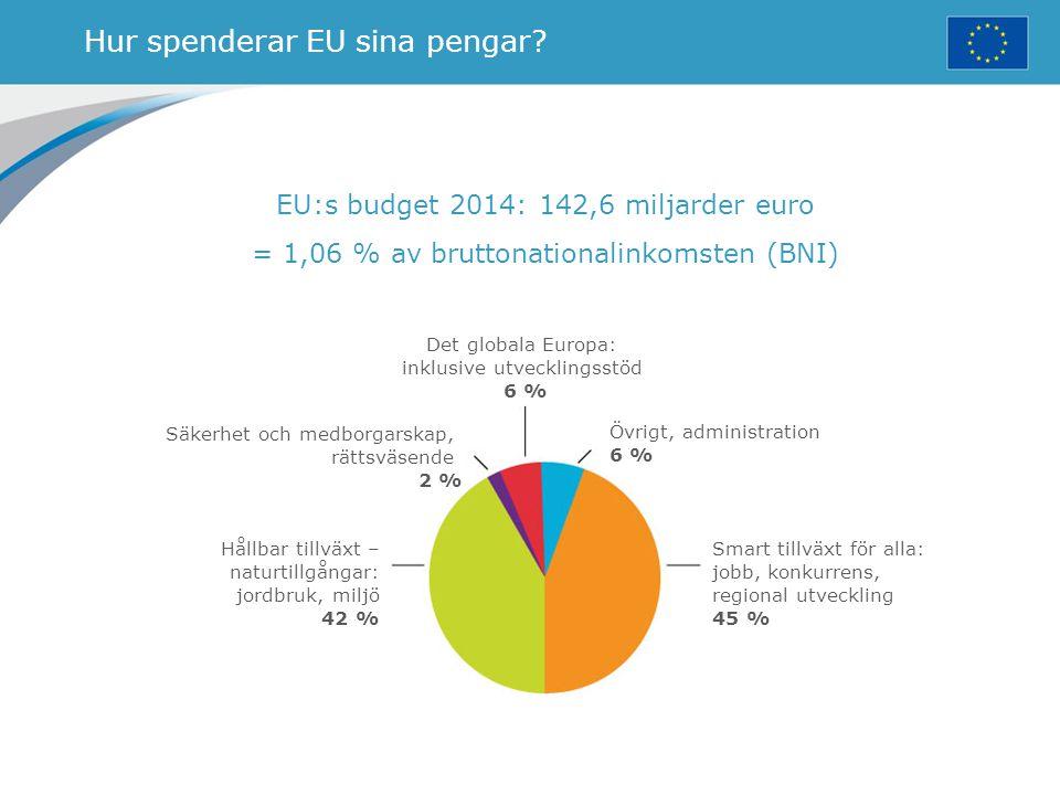 Hur spenderar EU sina pengar