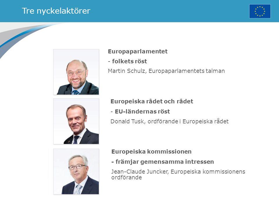 Tre nyckelaktörer Europaparlamentet - folkets röst Martin Schulz, Europaparlamentets talman