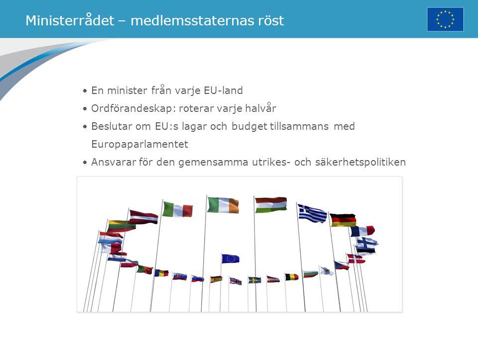 Ministerrådet – medlemsstaternas röst