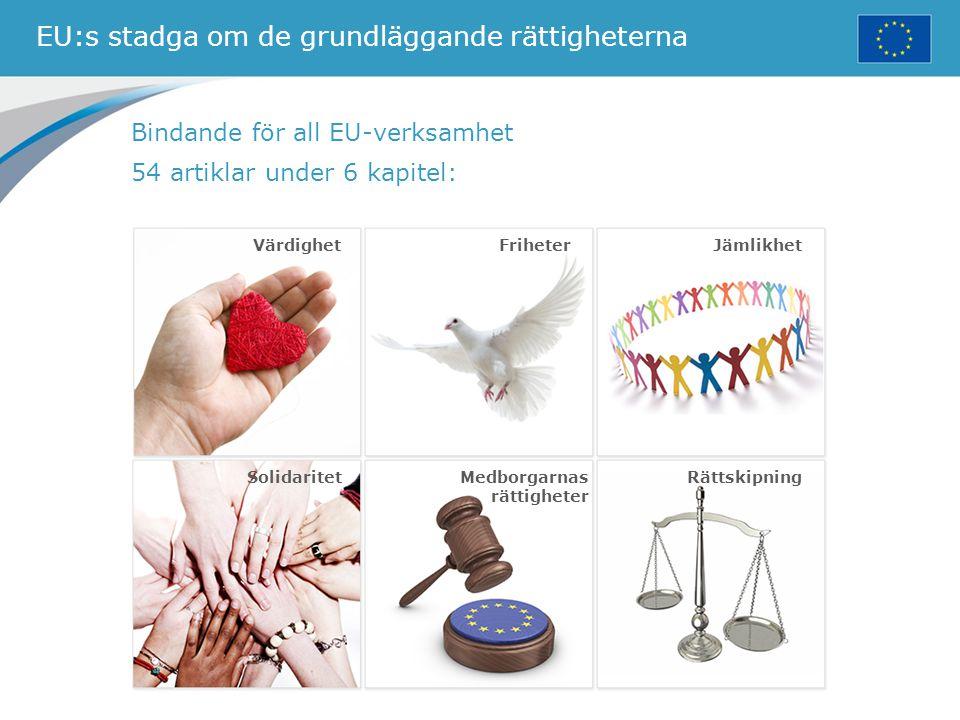 EU:s stadga om de grundläggande rättigheterna