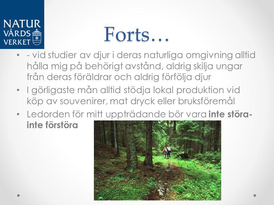 Forts…