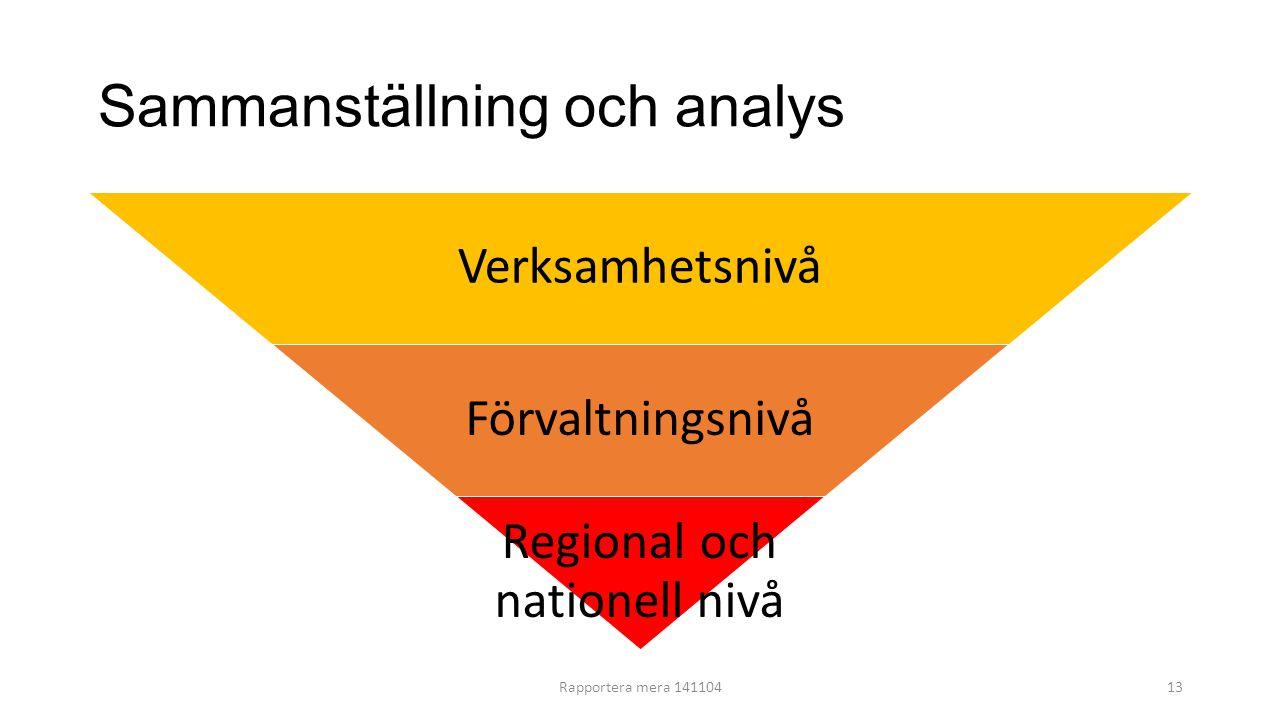 Sammanställning och analys