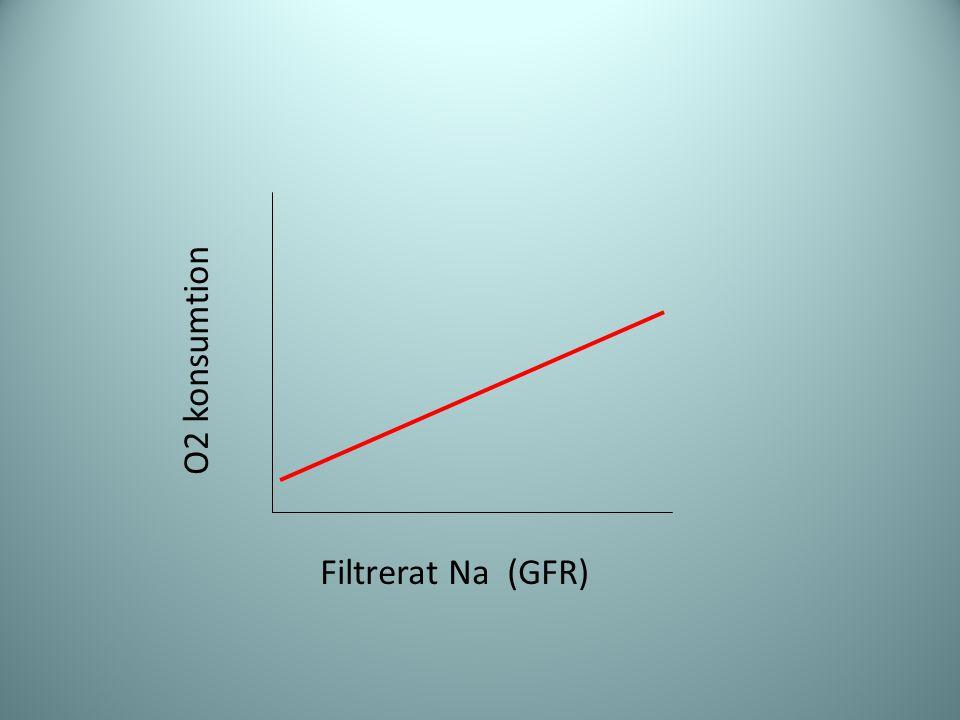 O2 konsumtion Filtrerat Na (GFR)