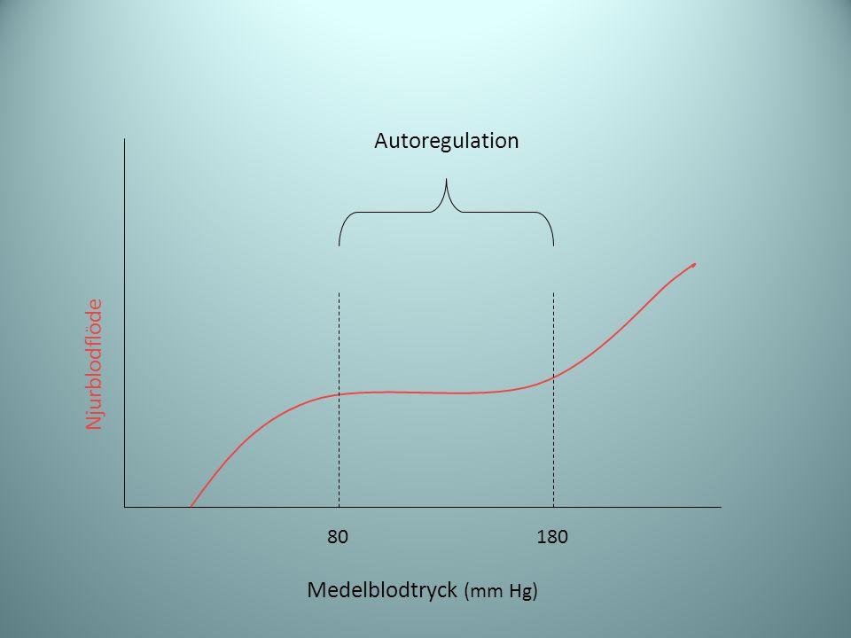Medelblodtryck (mm Hg)