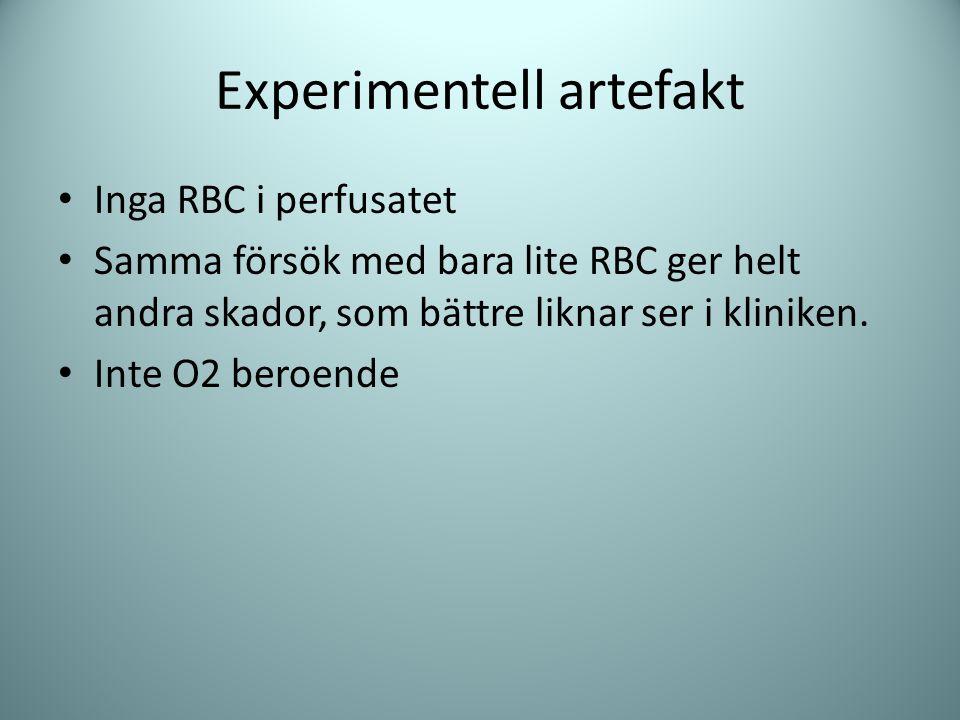 Experimentell artefakt