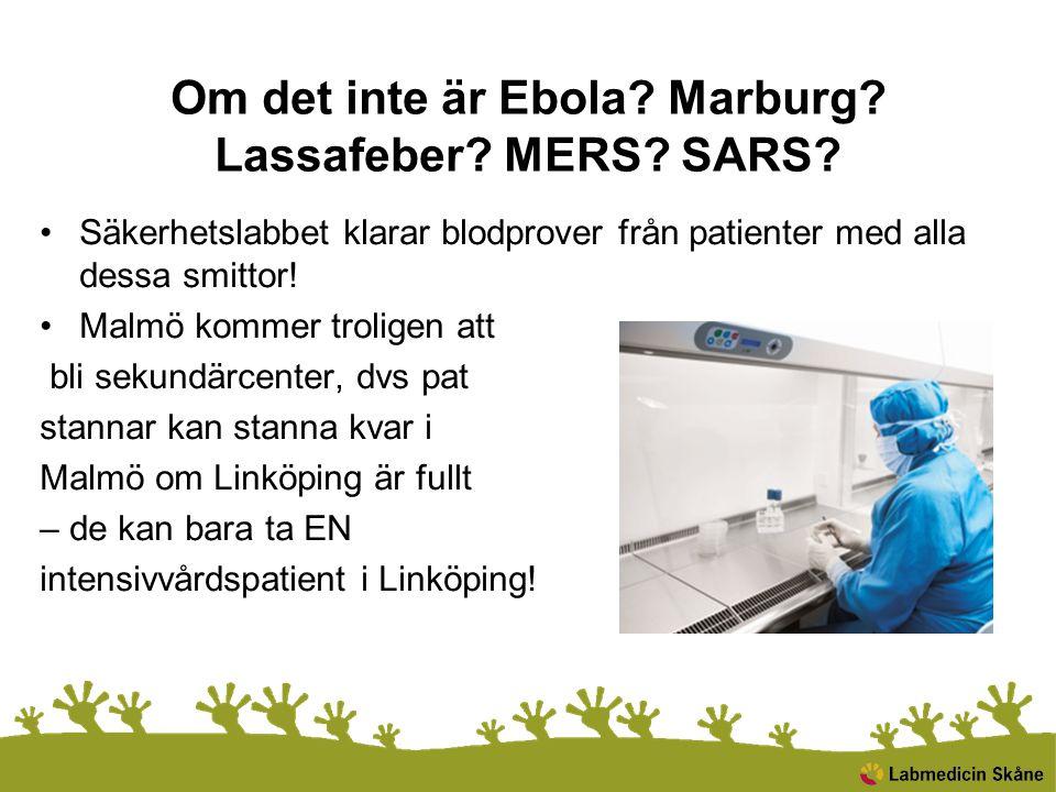 Om det inte är Ebola Marburg Lassafeber MERS SARS