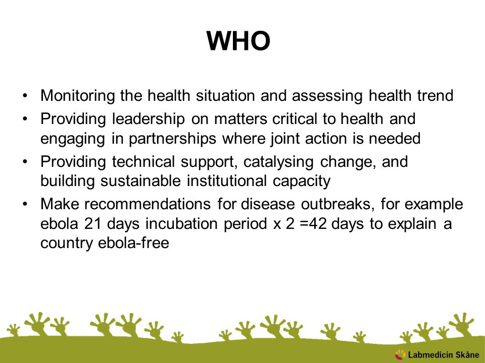 WHO Monitoring the health situation and assessing health trend