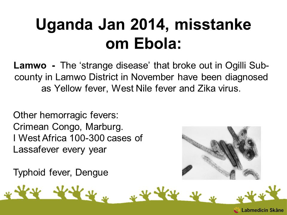 Uganda Jan 2014, misstanke om Ebola: