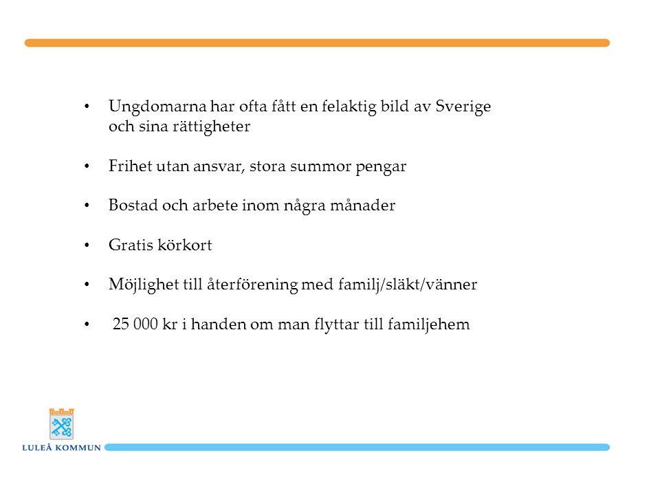 Ungdomarna har ofta fått en felaktig bild av Sverige och sina rättigheter