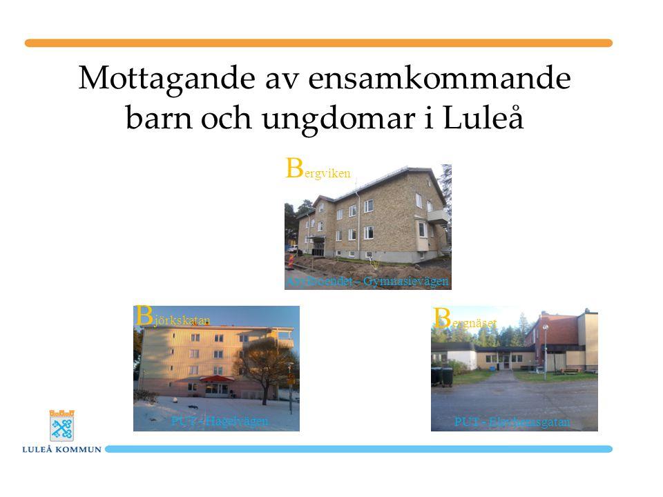 Mottagande av ensamkommande barn och ungdomar i Luleå