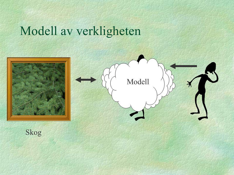 Modell av verkligheten