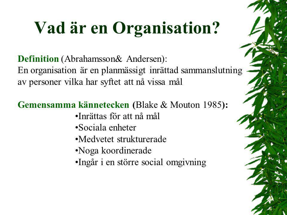 Vad är en Organisation Definition (Abrahamsson& Andersen):