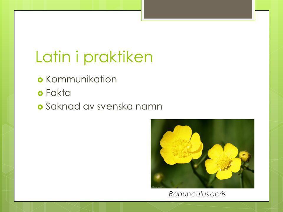 Latin i praktiken Kommunikation Fakta Saknad av svenska namn