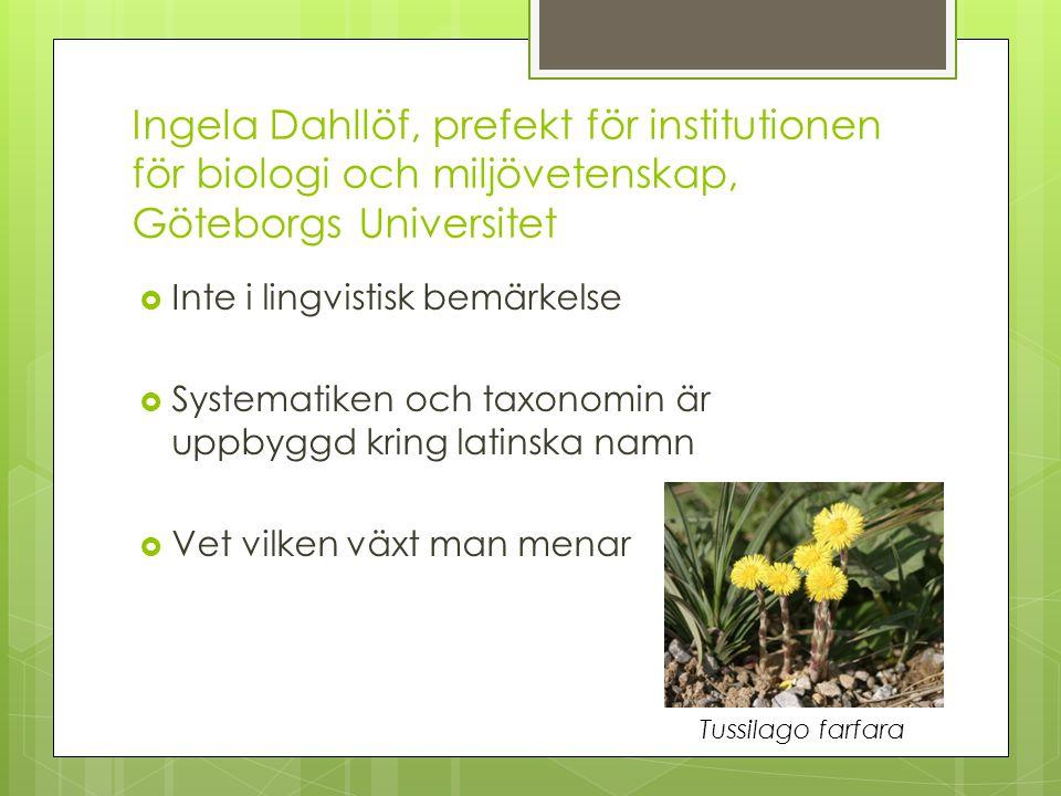 Ingela Dahllöf, prefekt för institutionen för biologi och miljövetenskap, Göteborgs Universitet